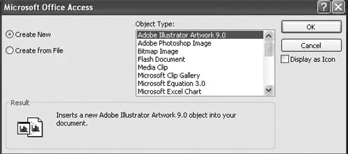 How To Insert Image In Access Using OLE Object Fields